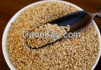 Quality Sesame seeds
