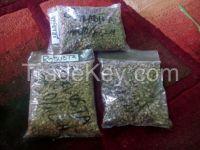 Sell Arabica Civets handpick Coffee Beans