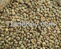 Robusta coffee beans available for sale