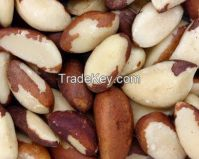 BRAZIL NUTS AVAILABLE