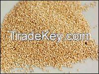 Quality Quinoa available