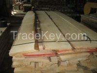 Unedged Dried Not Sorted Birch Timber