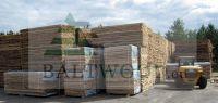 White Unedged Birch Lumber