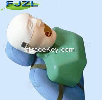 Dental Training Head Simulator Manikin