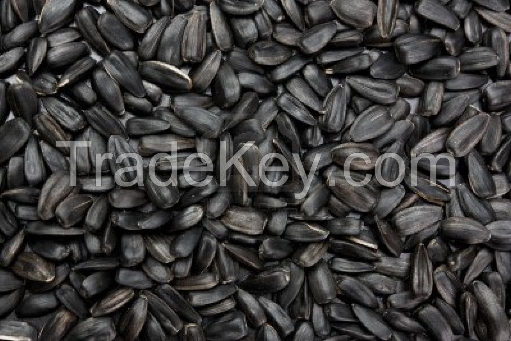 Sunflower seeds for human consumption (Black)