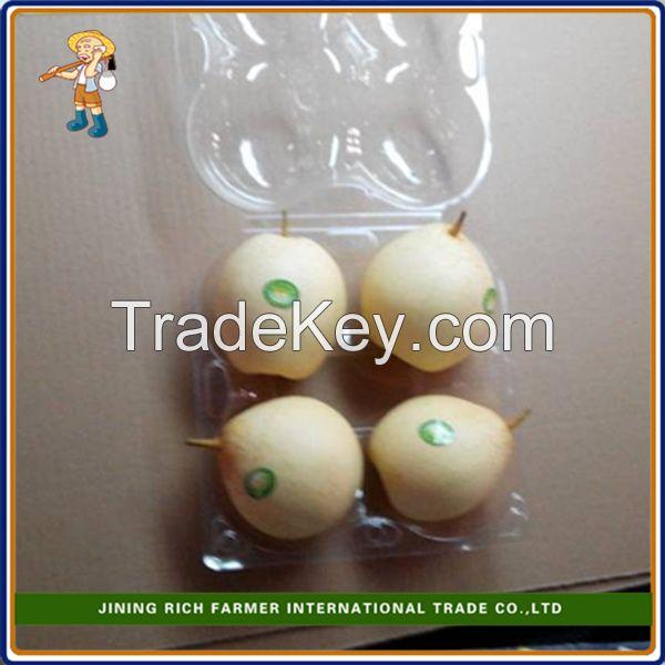 2015 New Crop fresh Ya Pear