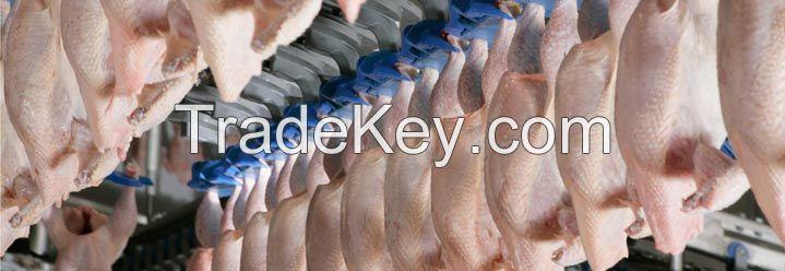 Chicken whole,  Chicken breast fillet single , Chicken breast fillet double ,  Chicken wings 3j  , Chicken wings 2j (I+II) ,  Chicken wings 2j (II+III) ,  Chicken wings 1j Chicken wing tip ,  Chicken skin. Chicken skin from leg  , Chicken skin from breast