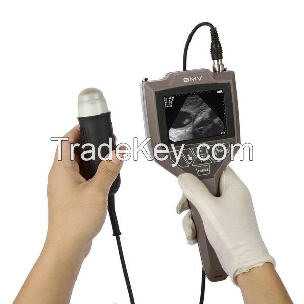 Full-digital swine, ovine ultrasound scanner