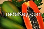 Papaya California