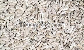 sunflower seeds from turkey