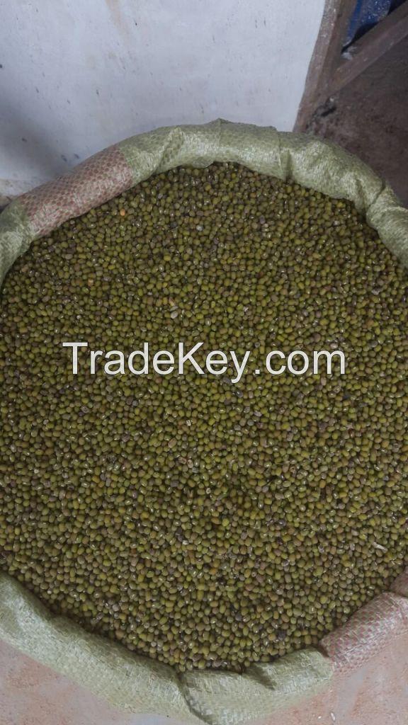 Sesame Seeds and Green Mung Beans