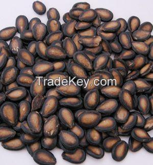 Melon seeds (Arishy)