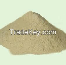 Hoodia Gordonii Powdered Extract