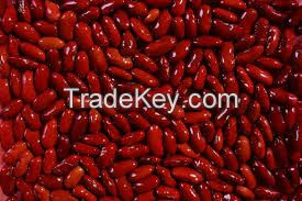 Red Kidney Bean