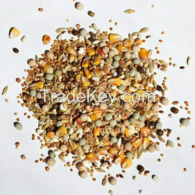 Bird feed mixes