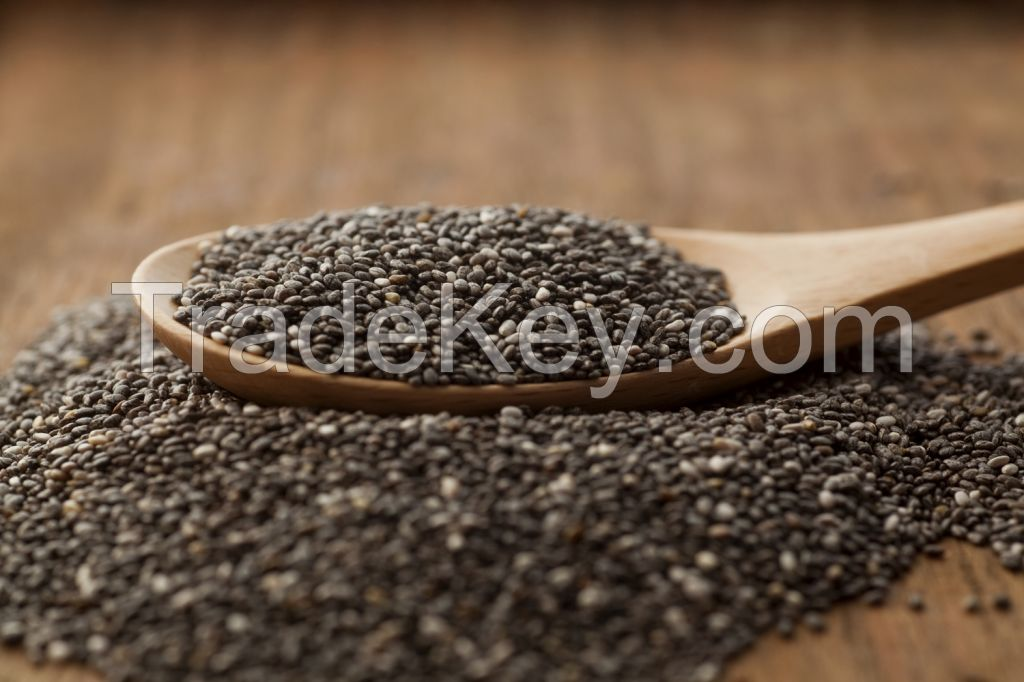CHIA SEEDS - Top Quality Lowest Cost - from Ecuador
