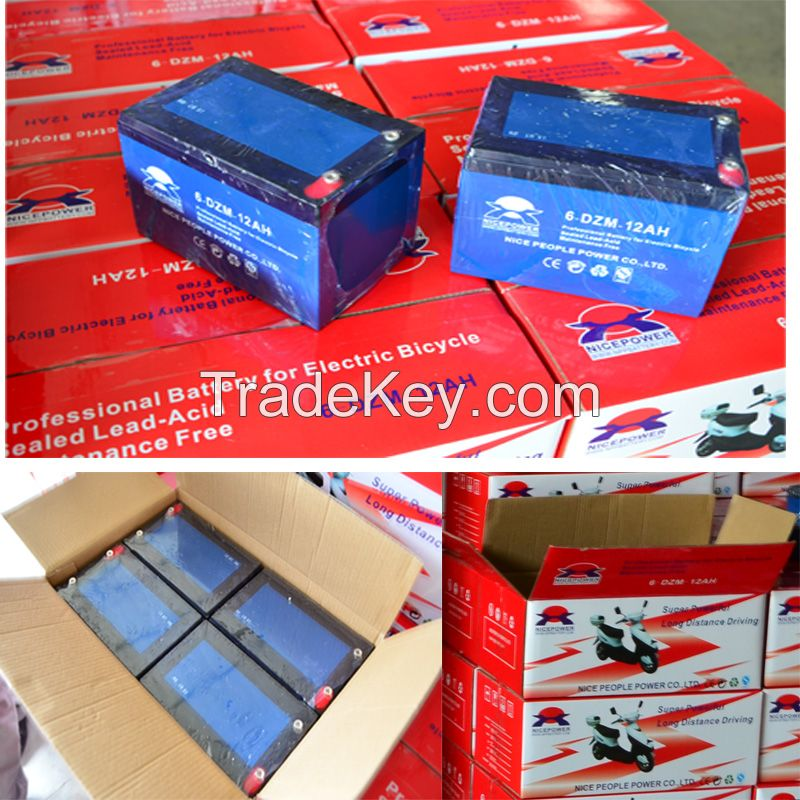 Spot electric bicycle battery