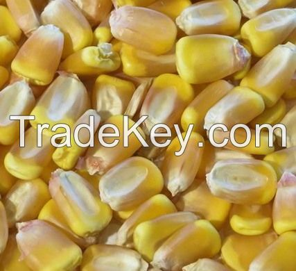 Agricultural goods from Ukraine