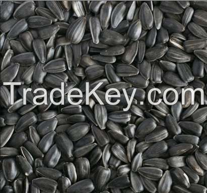 SUNFLOWER seeds from