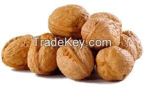 Almond nuts , Cashew nuts , Macadamia nuts , Pistachio nuts