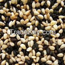 Sesame Seeds, Sunflower seeds, chia seeds, poppy seeds, pumkin seeds, water m...