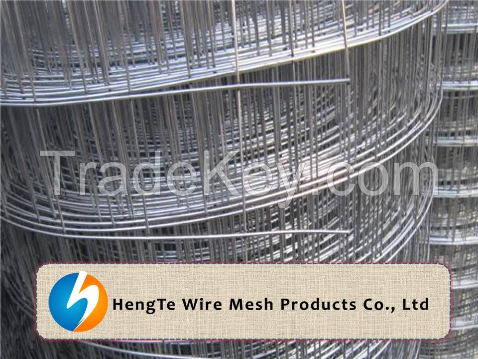 Galvanized Welded Wire Mesh Rolls & Panels