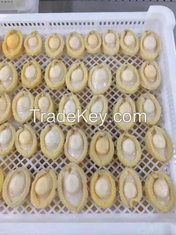 Frozen cooked Abalone