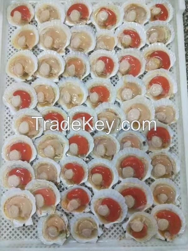 Half-shell sea scallops with Roe on