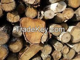 Wood Raw Material