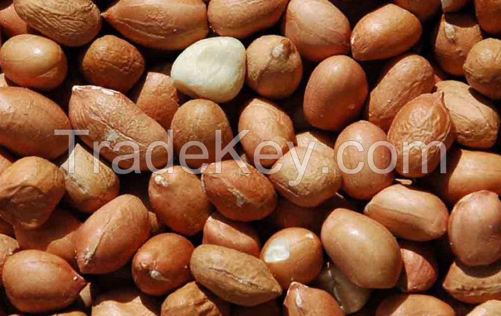 Grade A High Quality Peanut from Nigeria