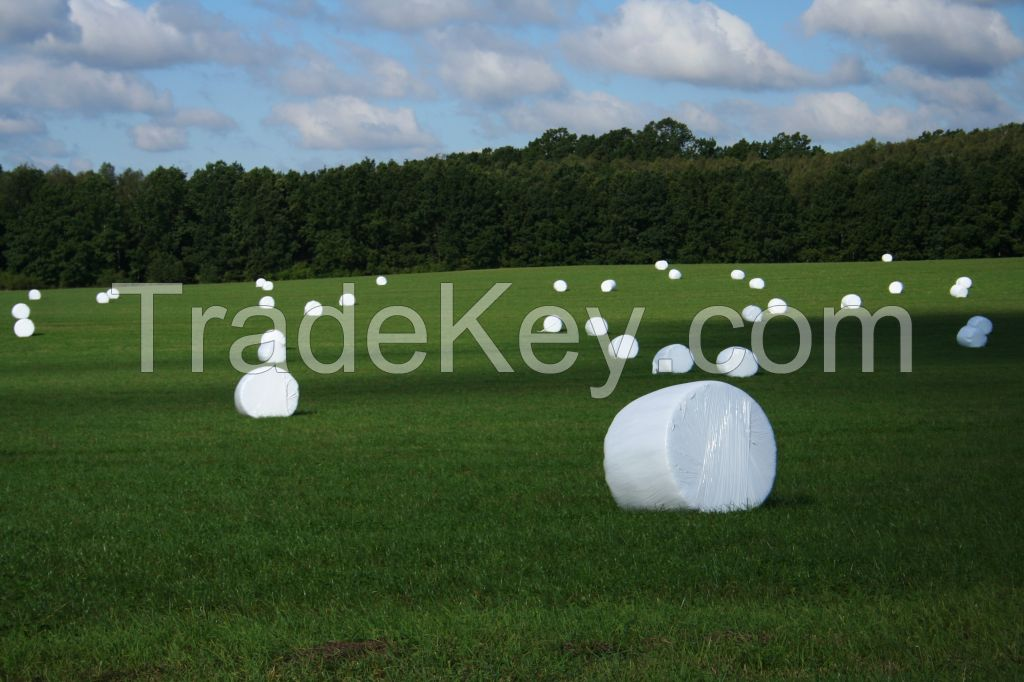 Silage wrapping film and net
