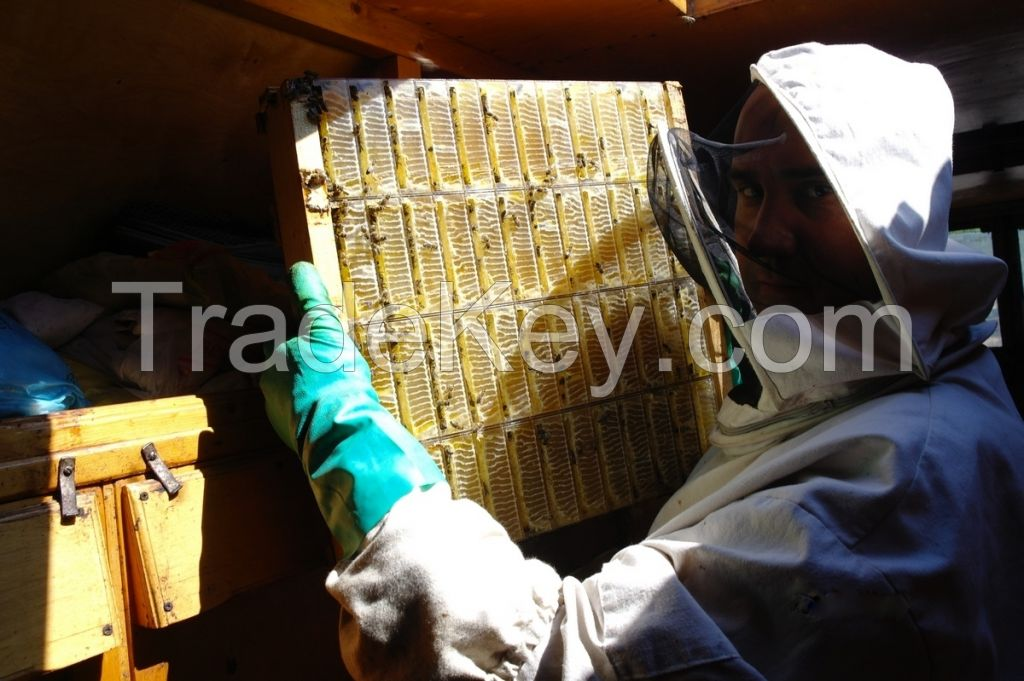 Honey in small sectional transparent plastic boxes and the wooden frames with honeycombs were packed by the bees itself.