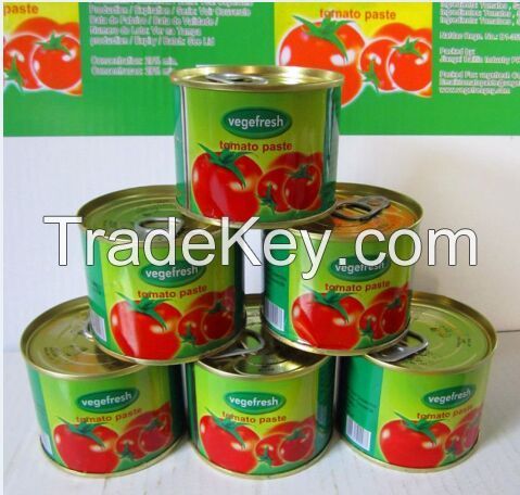 tomato paste canned