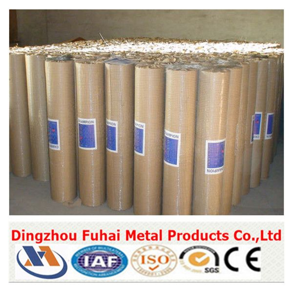 welded wire mesh/galvanized mesh