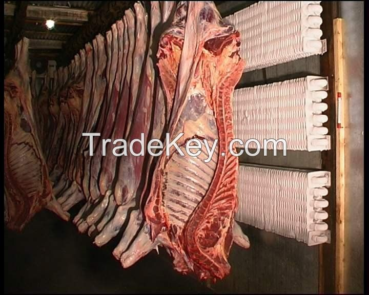 Frozen Halal Beef, Goat Meat, Lamb Meat, Sheep Meat