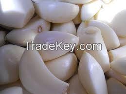 Golden fresh onion ,