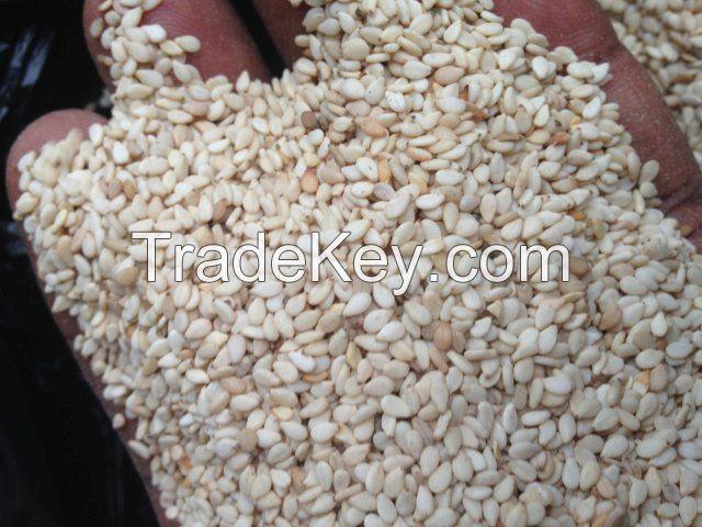 natural white sesame seeds, White Hulled Sesame