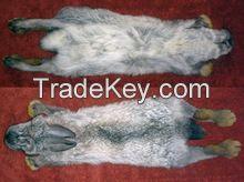 Frozen rabbit skin/ natural rabbit fur pelt