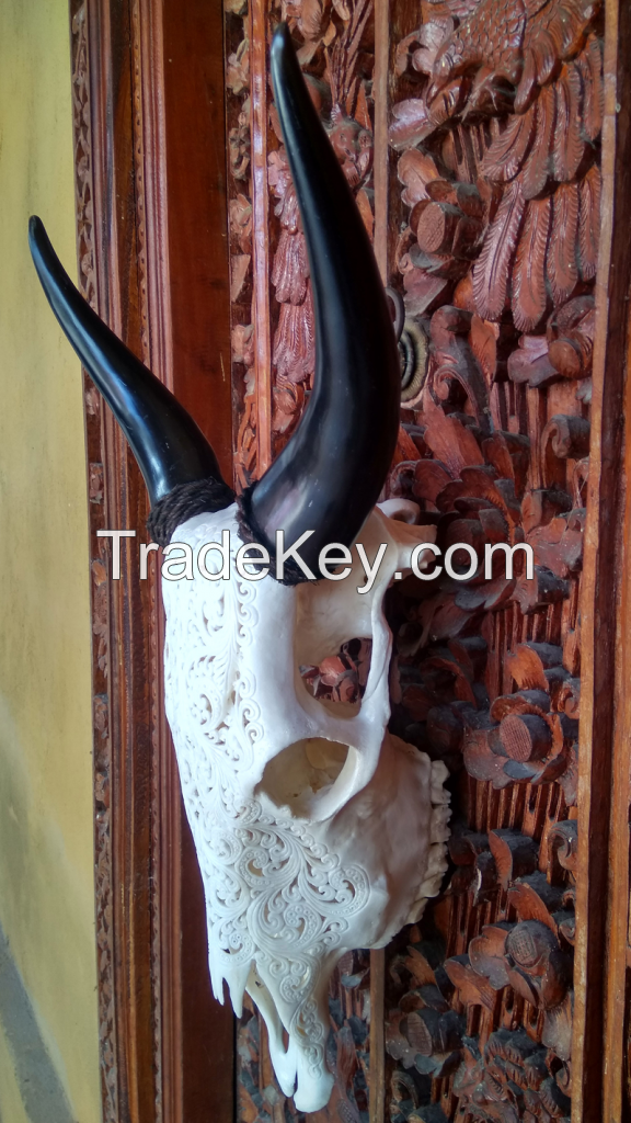 Balinese Hand Carved Cow Skull.