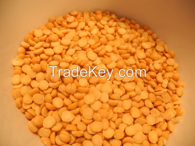 High Quality Yellow Lentils