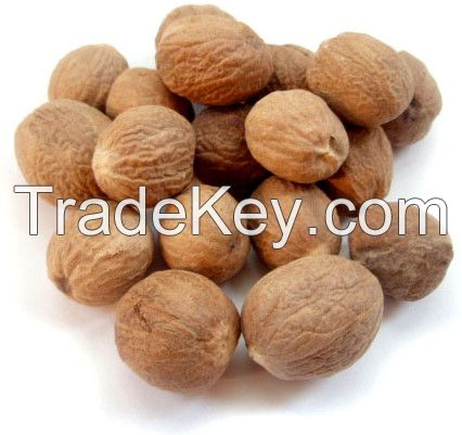 Roasted Macadamia Nuts With and Without Shells