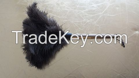 softer male black color ostrich feather duster