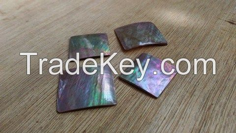 Sea Shell Inlays