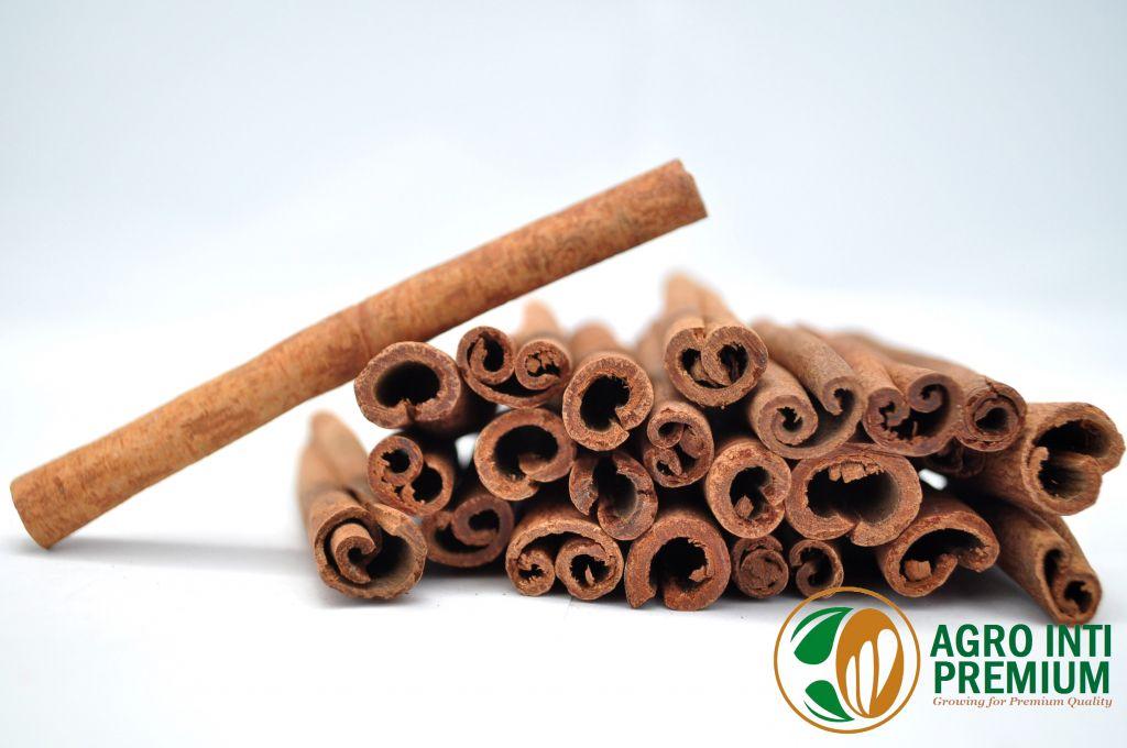 Cassia (Cinnamon) 6cm