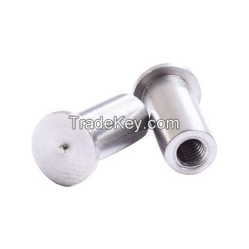 CNC Precision Stainless Steel Automative Electrical Knurled Bolt