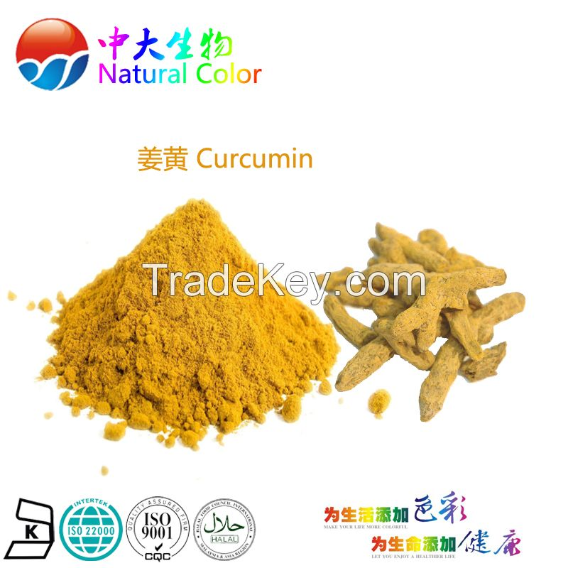 natural food color curcumin pigment supplier
