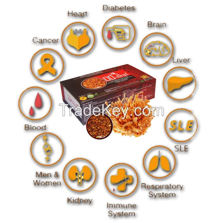 Pure Cordyceps - Happy and healthy every day!