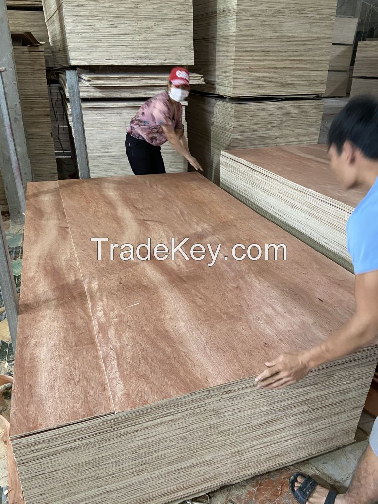 Bintangor face Commercial plywood for making sofa