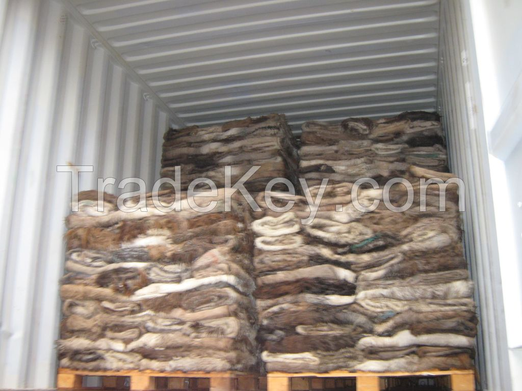 100% DRY SALTED DONKEY HIDES / WET SALTED DONKEY HIDES