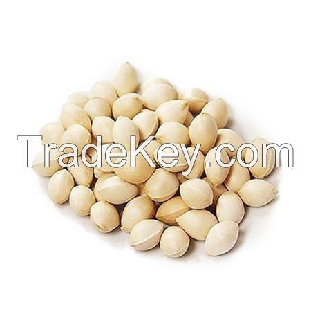 Best Quality Ginkgo Nuts